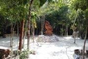 Kun-che Park Cozumel