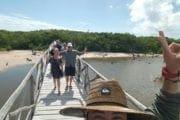 Laguna Jeep Tour