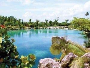 Cozumel island Tours