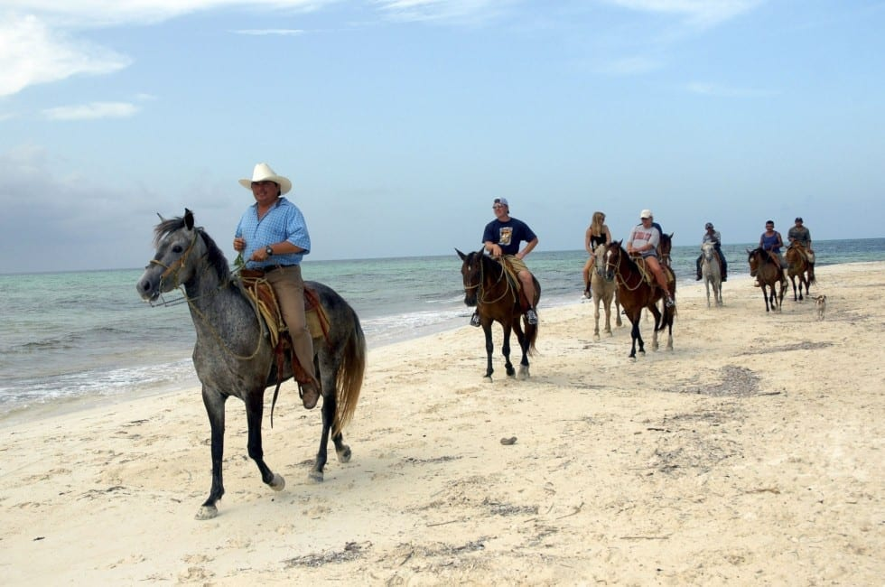 Cozumel Horseback Riding Beach And Jungle