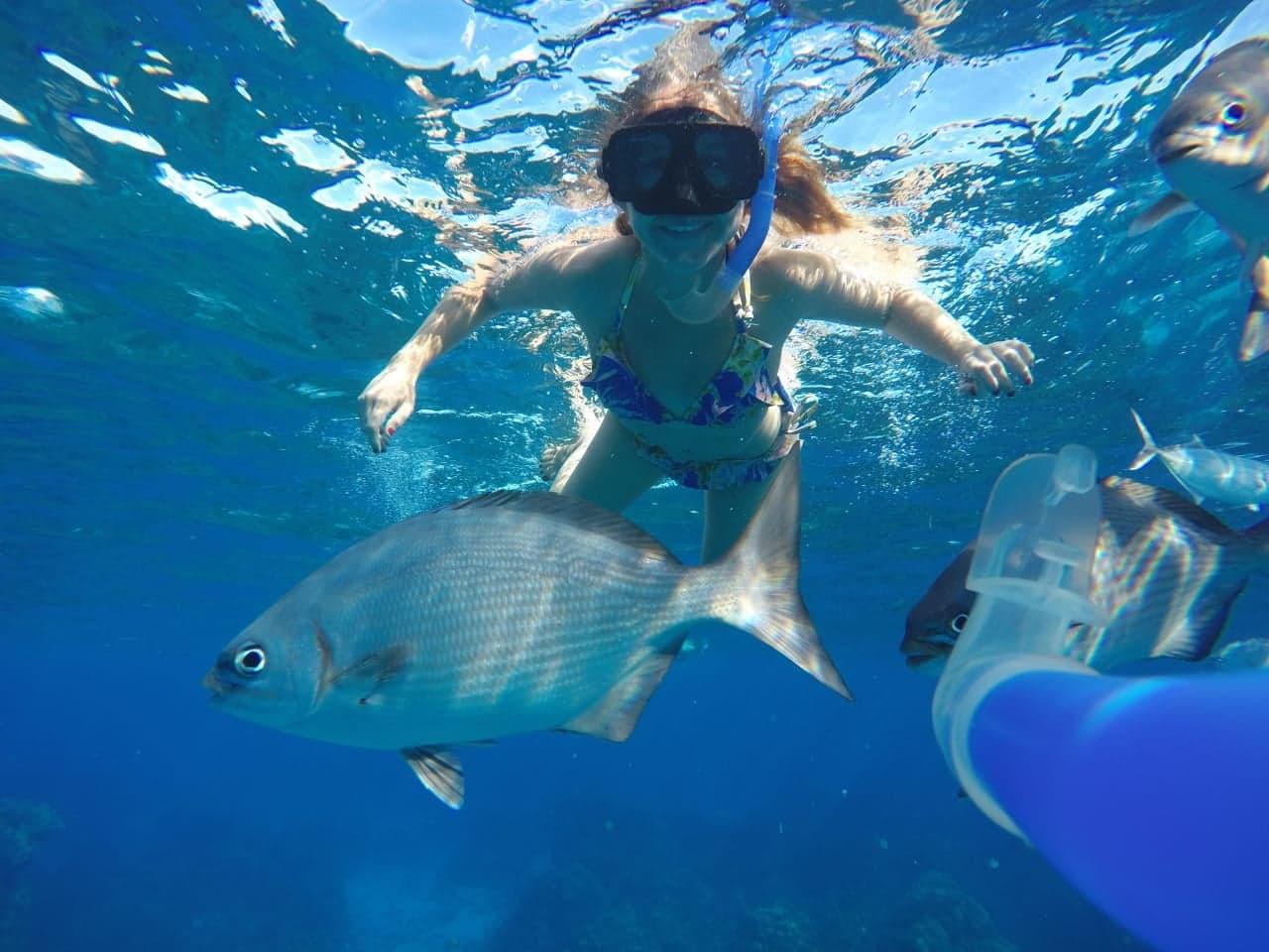 catamaran snorkel tour cozumel island mexico