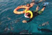 Snorkel Tour Cozumel Palancar colombia y el cielo